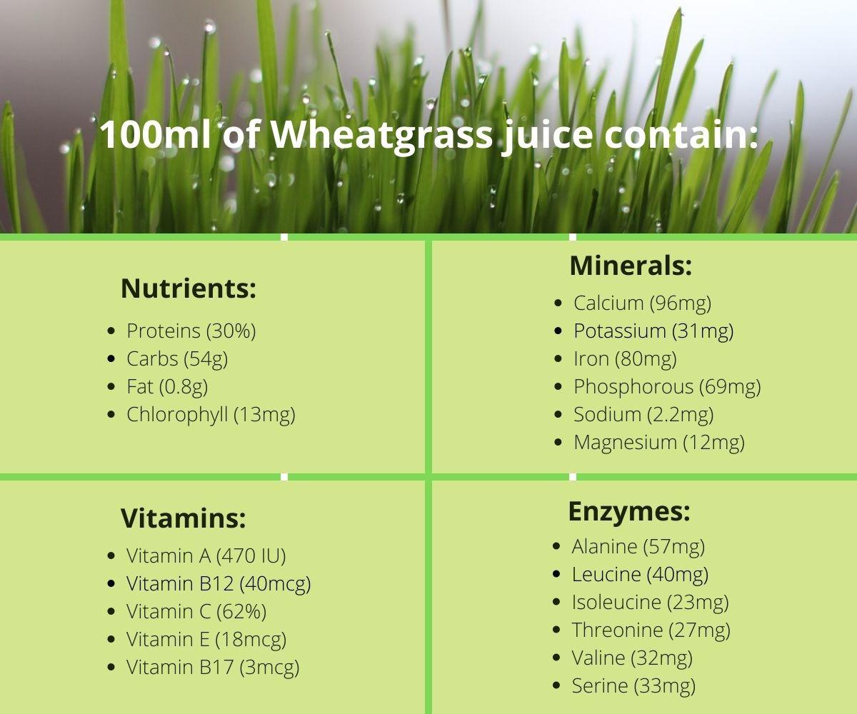100ml of Wheatgrass juice contain