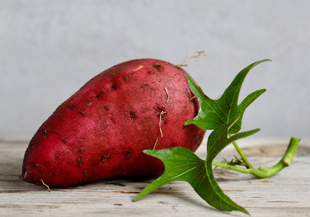 Are sweet potatoes good for juicing?