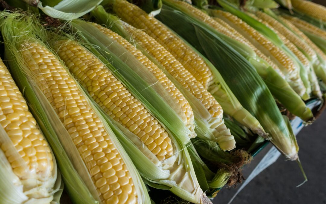 How To Make Corn Juice At Home?