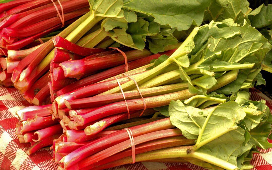 How To Juice Rhubarb?